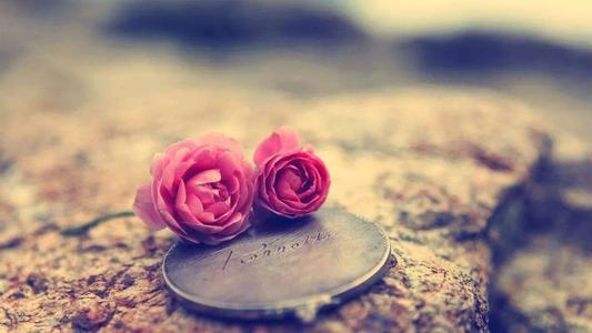 不要对我说我可以找到更好的,因为我的心里只有你是最好的